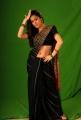 Shraddha Arya Saree Hot Pics