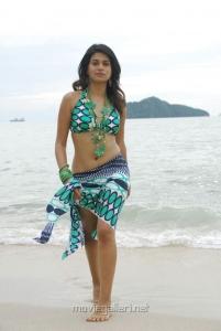 Shraddha Das Hot Bikini Beach Pics