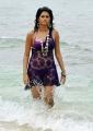 Shraddha Das Hot in Beach