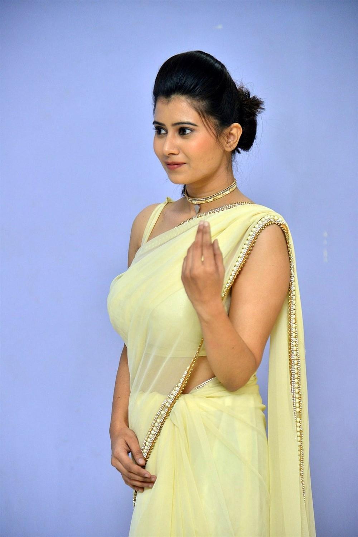 Actress Shraddha Sharma Saree Photos @ KS 100 Teaser Launch