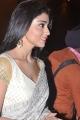 Actress Shriya Saran Hot Photos in White Saree