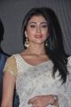 Tamil Actress Shriya Latest Photos in White Saree