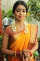 Shriya Saran Saree Photos at Pavithra Telugu Movie Launch
