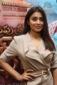 Gautamiputra Satakarni Actress Shriya Saran Latest Pics
