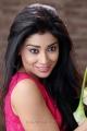 Pavitra Movie Heroine Shriya Saran Hot Photos