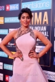 Actress Shriya Saran Pics @ SIIMA Awards 2018 Red Carpet (Day 1)