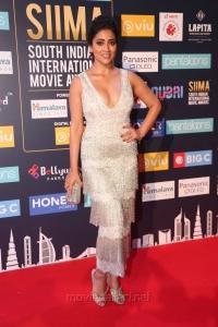 Actress Shriya Saran Hot Pics @ SIIMA Awards 2018 Red Carpet (Day 2)