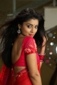 Actress Shriya Saran Hot Pics in Pavitra Movie