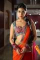 Actress Shriya Saran Spicy Hot Stills in Pavitra Movie