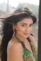 Actress Shriya Saran Hot Stills in Pavithra Movie