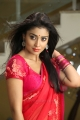 Actress Shriya Saran Hot Pics in Pavithra Movie