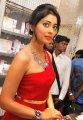 Shriya Saran Hot Stills