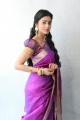 Tamil Actress Shriya Beautiful Photoshoot Gallery