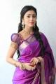 Shriya Saran Cute Photo Shoot Stills