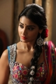Shriya Saran Hot Stills in Peru Mattum Than Pavithra Movie