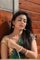 Shriya Saran Hot in Peru Mattum Than Pavithra Movie Pics