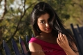 Peru Mattum Than Pavithra Movie Actress Shriya Saran Pics