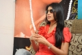 Cute Shreya Saran Interview Pictures about Pavitra Movie