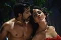 Prem Kumar, Shriya Saran Hot in Chandra Movie Gallery