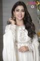 Actress Shriya Saran My South Diva Calendar 2019 Stills