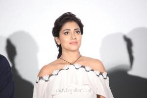 Actress Shriya Saran Stills @ Veera Bhoga Vasantha Rayalu Trailer Launch