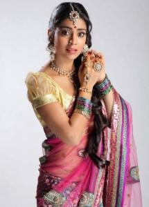 Shriya Saran New Saree Photoshoot Stills