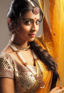 Shriya Saran Hot Saree Photoshoot Pics