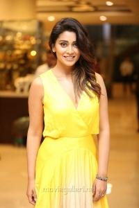 Actress Shriya Saran Photos in Yellow Long Skirt