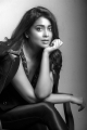 Actress Shriya Saran Recent Photo Shoot Pics