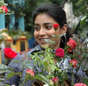 Shriya Saran @ Rowthiram Movie Stills