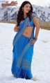Gabbar Singh Heroine Shruthi Hassan Hot Blue Saree Stills