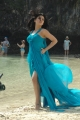 Shruti Hassan Hot Pictures