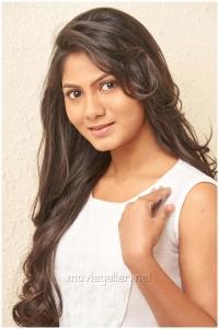 Tamil Actress Shruthi Reddy New Photo Shoot Stills