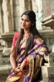 Tamil Actress Shruthi Reddy in Saree Photo Shoot Images