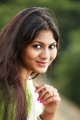 Tamil Actress Shruthi Reddy Saree New Photos