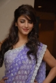 Actress Shruti Haasan in Saree Cute Photoshoot Stills