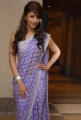 Telugu Actress Shruti Hassan Cute in Saree Photoshoot Stills