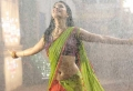 Shruti Hassan Hot Saree Pics in Gabbar Singh