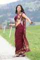 Shruti Hassan Hot in Saree @ Gabbar Singh