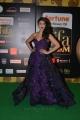 Actress Shruti Haasan Hot Photos at IIFA Utsavam 2016 Green Carpet