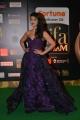 Actress Shruti Hassan at IIFA Utsavam 2016 Green Carpet