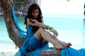 Shruti Hassan Hottest Beach Photos