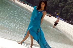 Shruti Hassan Hottest Photos in Blue Dress