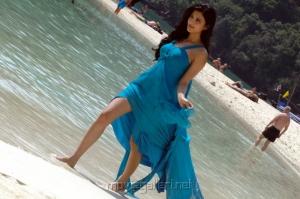 Shruti Hassan in Blue Dress Hot Images