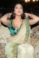 3 Movie Heroine Shruti Hassan Hot Pics in Saree Stills