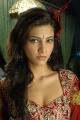 Telugu Actress Shruti Hassan Hot Pictures