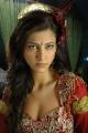 Actress Shruti Hassan New Hot Pictures