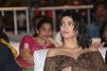 Actress Shruti Hassan Pics @ Premam Audio Release