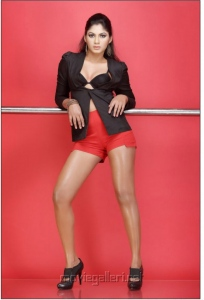 Shruti Reddy Spicy Photo Shoot Stills