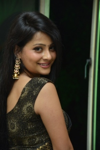 Actress Shubhangi Pant Black Saree Pics @ Rave Naa Cheliya Trailer Launch